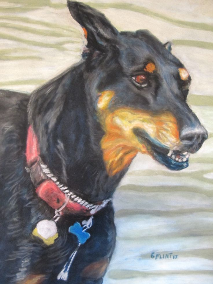 Maggie soft pastel on Suede board. Artist Gail Flint