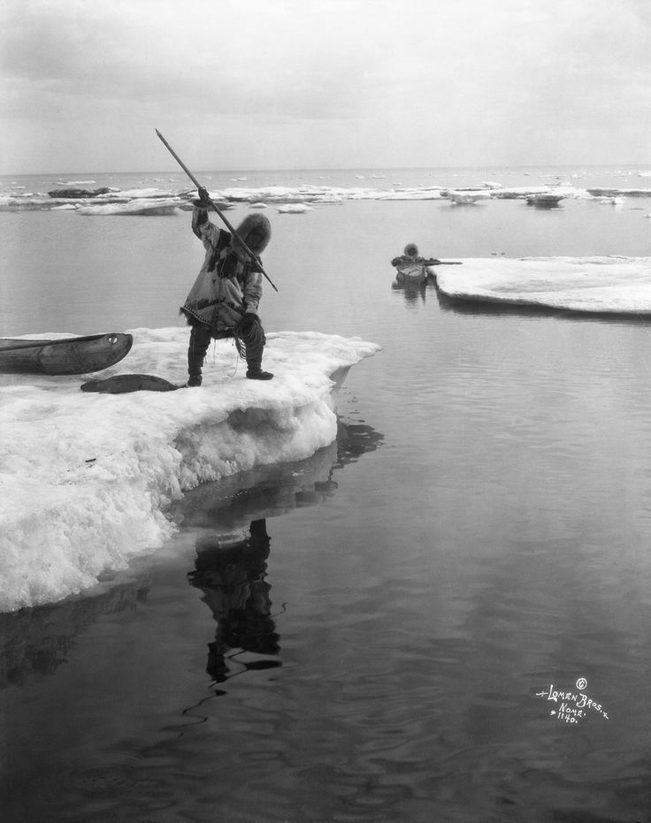 Inuit seal hunters, with kayaks, among ice floes, Alaska. Date: [ca. 1903-1915] Photographer / Illustrator: Lomen Brothers, Nome, Alaska