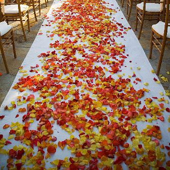 193 best images about Fall Wedding Flowers on Pinterest | Orange ...