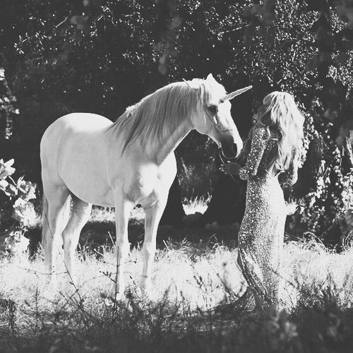 Image via We Heart It #b&w #blackandwhite #Darkness #dreams #funny #girls #happy #nature #places #souls #unicorn #wonderland #kızlar #mutluluk #karanlık #siyahbeyaz #ruhlar
