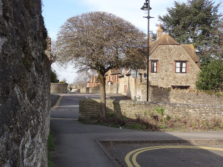 Tree in the corner of the car park looking towards Cherry Orchard, in the market town of Highworth, Wiltshire, England.