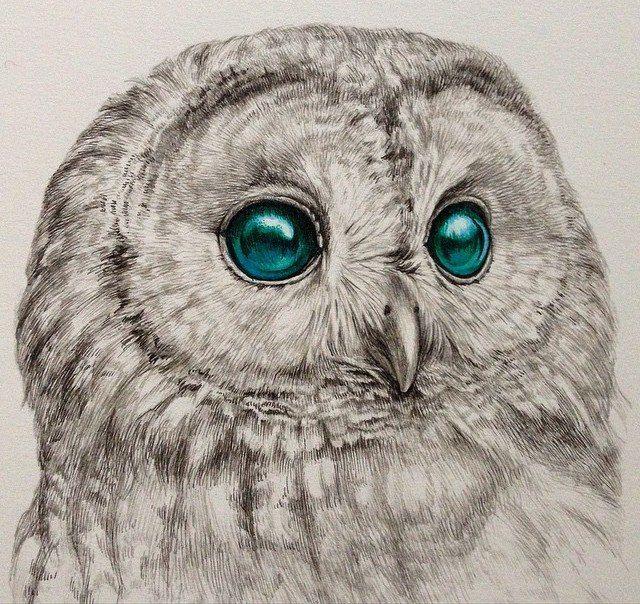 Wonderful Eyes By Kozue Oshima