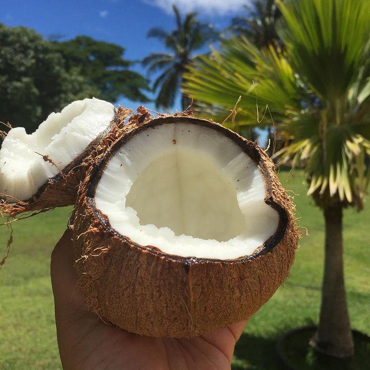 Quench your thirst #islandvibes #coconut #fresh #coconutwater #ココナッツ #ココナッツウォーター