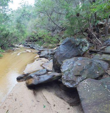 Mt Wareng rural land for sale – Windsor NSW, Singleton, Rural Real Estate • Nature Conservation Trust of NSW