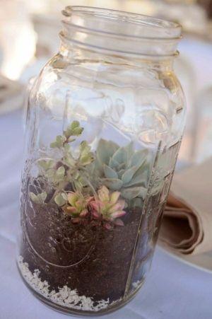 mason jar mini garden