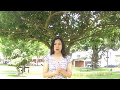 ▶ Canciones de saludo y despedida - YouTube / Muy bonitas canciones !!!