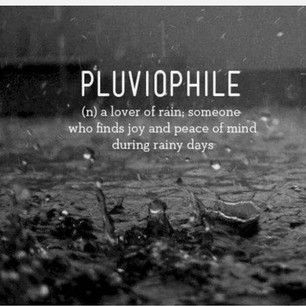 Pluviophile  (n) a lover of rain; someone who finds joy and peace of mind during rainy days ~❤~