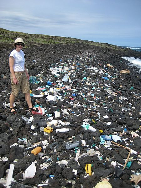 Plastic trash on a beach in Hawaii~ Ok this looks bad~ We realy need to do our share and use waste cans,that's easy right?