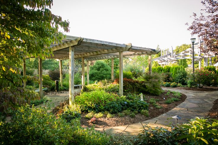 54 Best Images About Views Of The Garden On Pinterest Gardens Shade Garden And Fayetteville