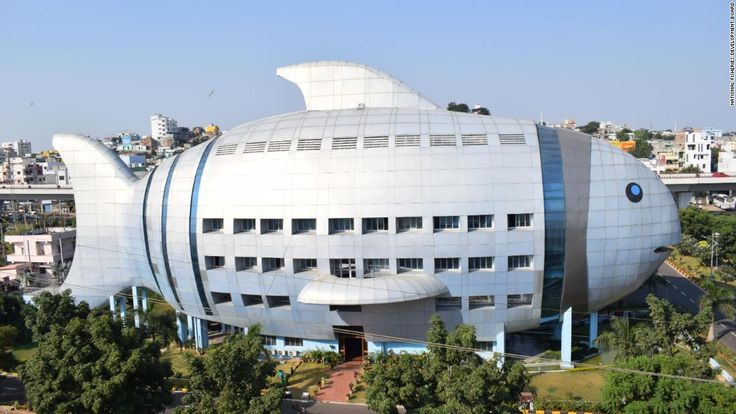 The typical government office is unremarkable and nondescript, its purpose unknown to the outside world. Not so with the National Fisheries Development Board (NFDB) in Hyderabad, India.