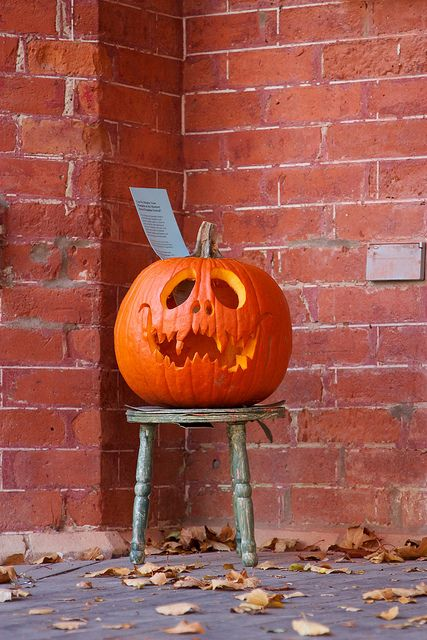 Toofy // Carved pumpkin by mcdux