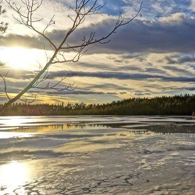#finnskogen #instagram #followme #best2days #ulbolig #visitnorway #norway2day #amazing #country #glåmdalen  #visitøstlandet #nrkøstnytt #innlandet #vghelg #norgesferie #east2norway #inatur #friluftsliv #villmarksliv #dreamnorway #icefishing #hunting #fiske #jakt #2vær #utno #åsneskommune #follow4follow #solnedgang #finnskoglitteratur