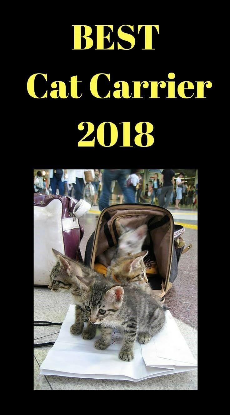 Best Cat Carrier 2018. Buy Cat Carrier. Choosing the Best Cat Carrier #catcarrier #bestcatcarrier #bestcatcarrier2018