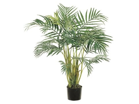 entracing palm tree type house plant. Pack of 2 Tropical Artificial Areca Palm Trees 4  169 99 41 best Plants images on Pinterest plants