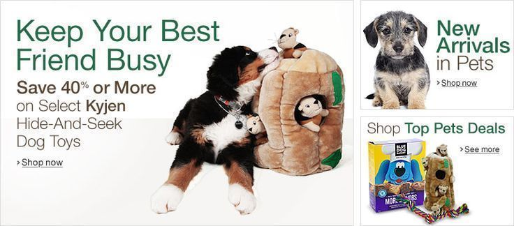 Welcome To The Amazon Canada Pet Supplies Store Click Website Or Petproductso Amazon Canada Click Pet In 2020 Pet Supply Stores Pets Online Pet Supplies