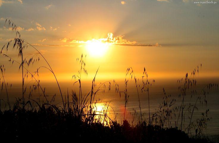 Jezioro, Źdźbła, Trawy, Zachód, Słońca
