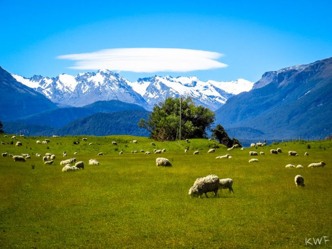 Glenorchy, South Island, NZ