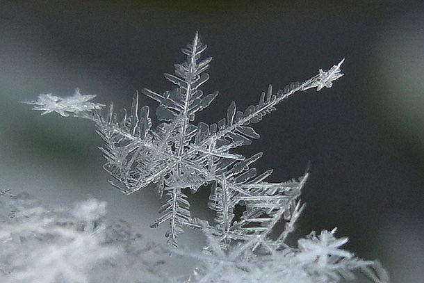 """Das Dezember-Gedicht von Erich Kästner aus dem Zyklus """"Die 13 Monate"""" regt zum Nachdenken an. Lesen Sie das Gedicht auf unserer Weihnachtsseite."""