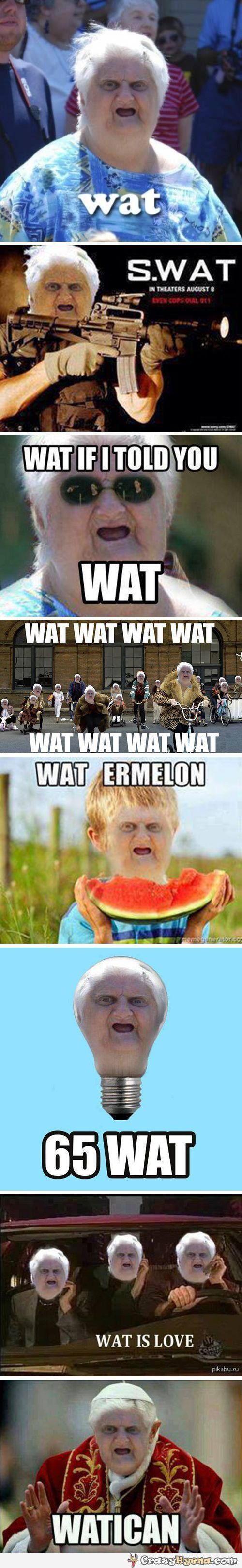 wat-old-lady-meme-compilation:
