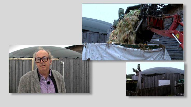 La biomasse, source d'énergie