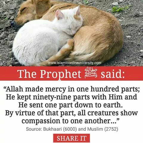 Ar- Rahman, Ar-Raheem: Most beneficient, Most Merciful: attributes of Allah. Alhamdulillah