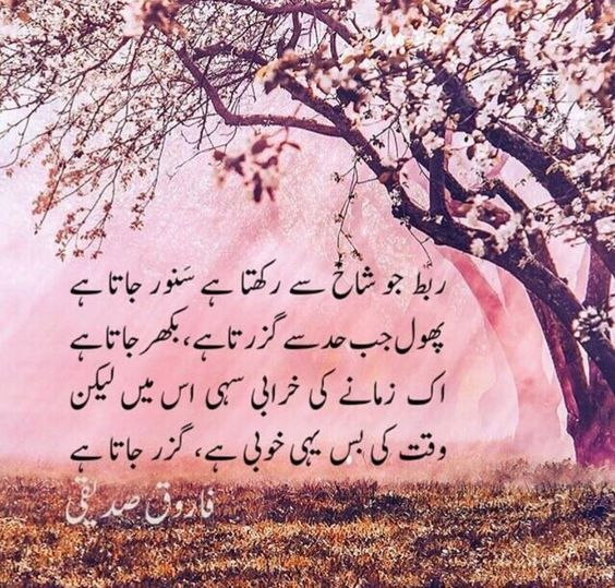11 best Pushto poetry images on Pinterest | Poem, Poetry and Afghans