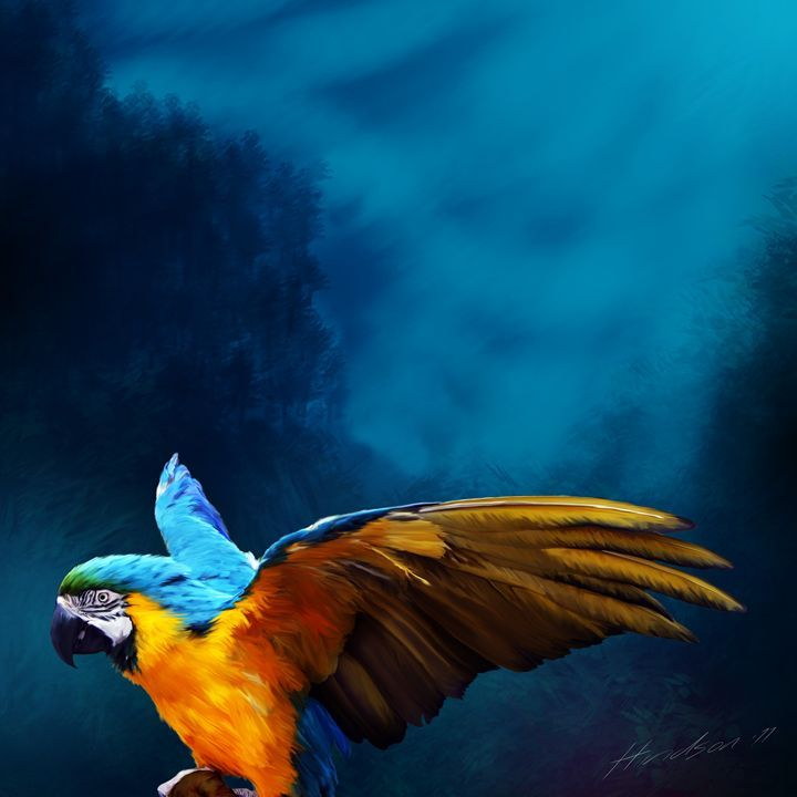 Blue Macaw - Julian Hindson