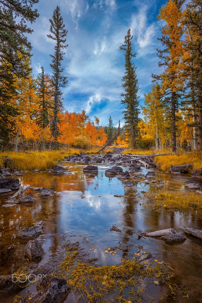 Duck Creek in fall (Utah) by Rex Jones on 500px