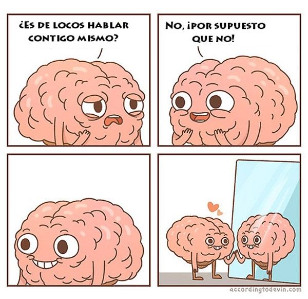 cerebros - Google Search