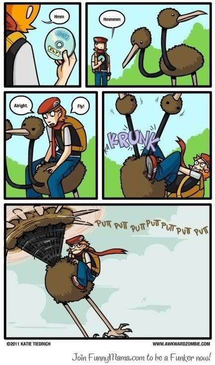 how to fly in pokemon x