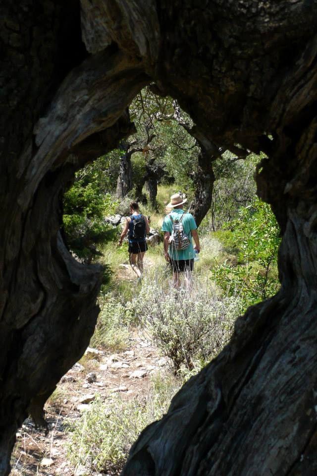 "Hiking with ""2407m Kardamili Mountain Activities"""