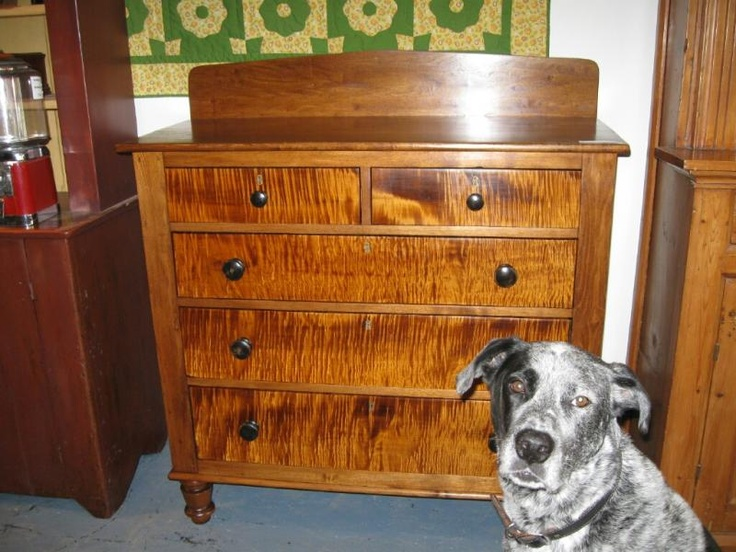 Tiger Maple and Butternut chest of drawers with bonus appearance of Lucky  the dog! - 156 Best Tiger Maple Furniture Images On Pinterest Big Cats