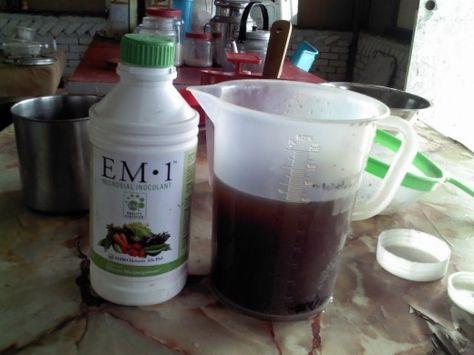В домашних условиях можно приготовить регенераторы почвенного плодородия в виде ЭМ-экстракта