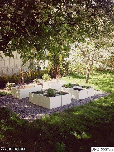 örtagård,örtaträdgård,örtträdgård,örter,pallkragar