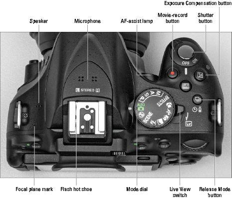 Nikon 5200 for dummies ;)