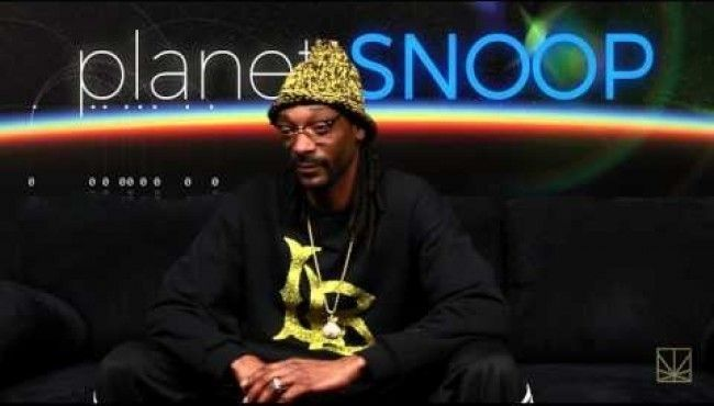 Planet Snoop, Squirrel Vs Snake Narrated By Snoop Dogg. #snoopdogg #planetsnoop #hiphop #discovery #earth #nature #squirrel #snake #funny #narrater #viral #news