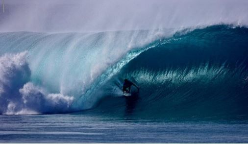 Surf Shop for Sale Sunshine Coast
