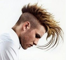 Long Punk Hairstyles,Punk Hair Styles