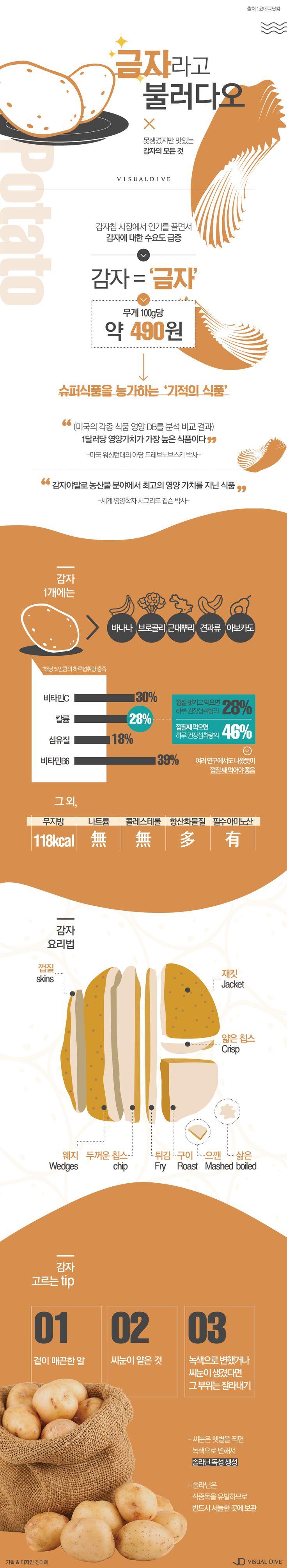 영양 만점 슈퍼푸드 '감자'의 모든 것 [인포그래픽] #potato / #Infographic ⓒ 비주얼다이브 무단 복사·전재·재배포 금지