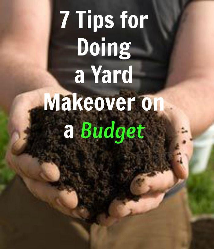 Budget Backyard