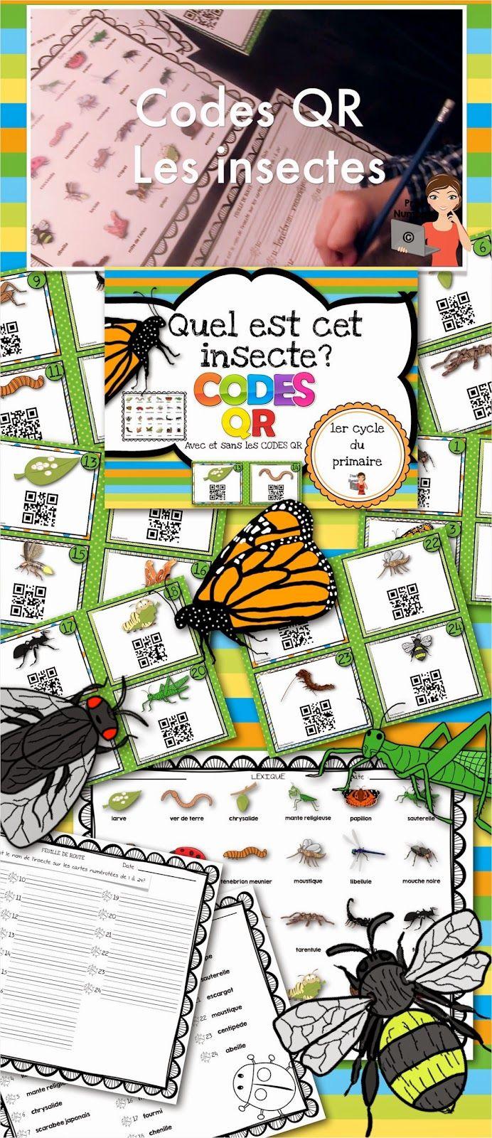 Cartes tâches avec #qrcodes sur la thématique des #insectes #tutoriel #daily5