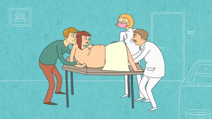 Hoe groeit een kindje in de buik? (Schooltv)