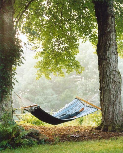 calm: Summer Day, Summer Picnics, Hammocks, Summerday, Naps Time, Country Life, Backyard, Good Books, Back Yard