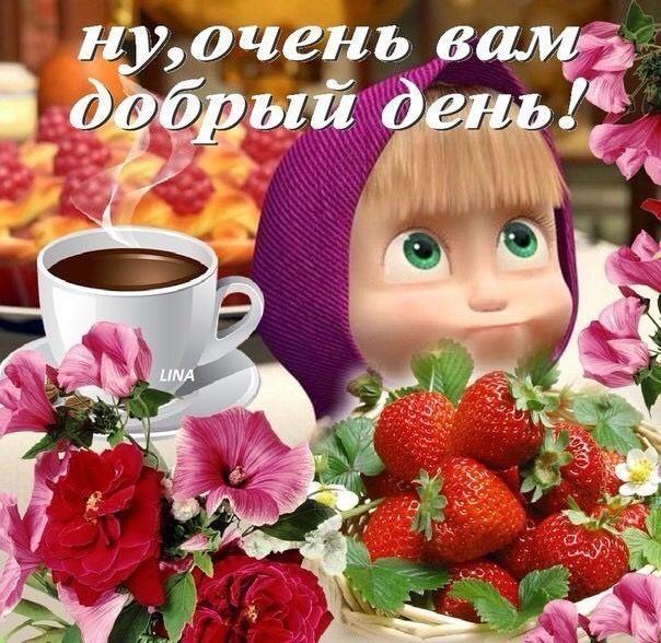 Добрый день ! | Милые открытки, Утренние цитаты, Доброе утро