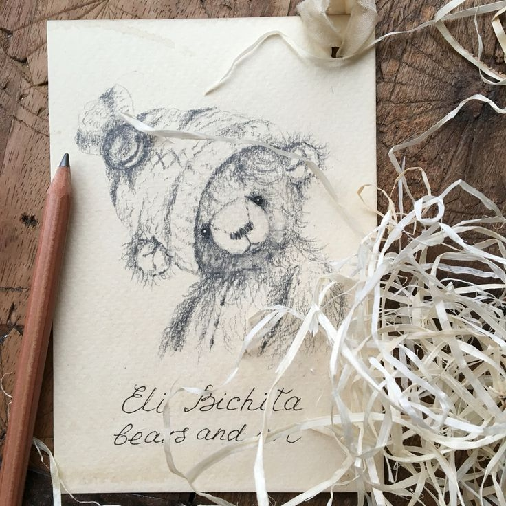 Teddy bear drawing with pencil