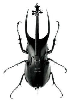 Musical Bugstruments  by Scandinavian DesignLab: Designlab Surrealism, Animal Drawings, Inspiration, Design Lab, Scandinavian Designlab Would, Scandinavian Designlab Show, Paris Texas, Designlab Kristen