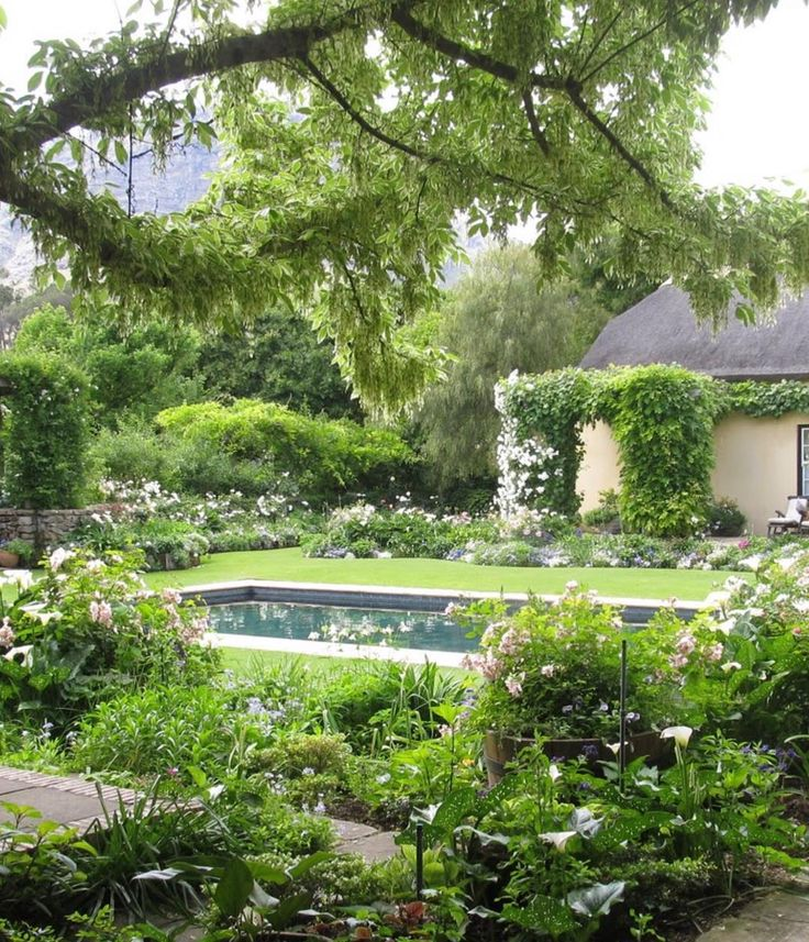 """""""LA RIVE"""", Franschoek, Cape Province, South Africa. This beautiful garden belongs to family friends. It is cleverly designed with a series of shallow stone built terraces. The Cape Dutch Style house has a thatched roof and the back has a lovely U-shaped veranda that looks onto the garden and what we see here are the perimeter beds of the veranda. You can just see the tall craggy mountains through the trees, a sight so distinctive to the Cape. I visited this garden some time ago it was a…"""