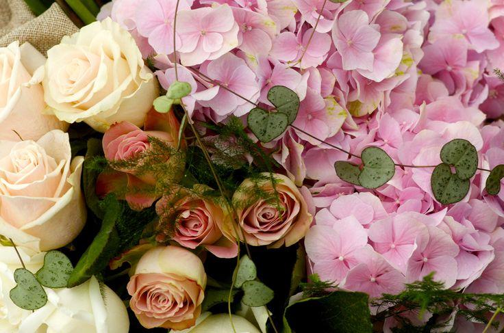 Stunning roses and hydrangeas