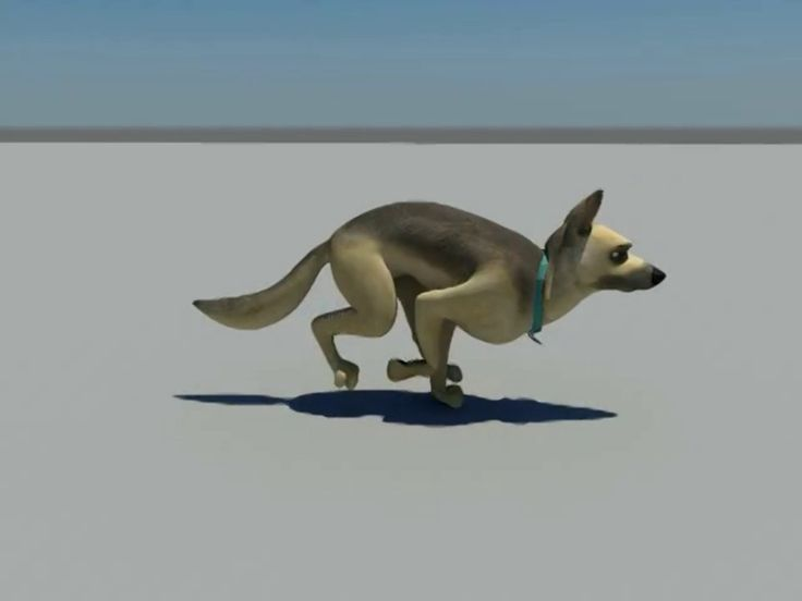 Quadruped Run Cycle