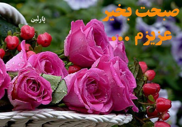 صبح بخیر Flower Wallpaper Flowers Wallpaper Iphone Roses